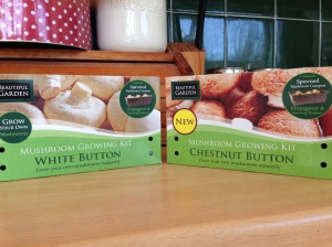 My 2 varieties of mushrooms from Poundland. Guess how much each box was?