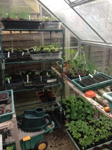 It's that time of year when the greenhouse starts to heave under the strain.