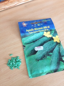 Bright green Spanish Cucumber seeds!!