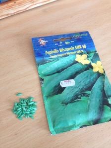 Bright green Spanish Cucumber seeds!!