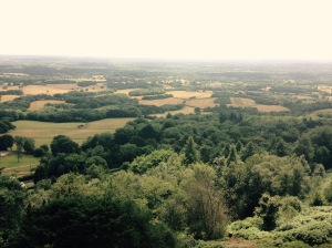 The view at Leith Hill.