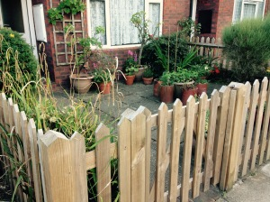 My front garden, surrounded by a lovely picket fence.