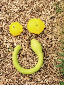 "Smile and say......""Squashes!!"""