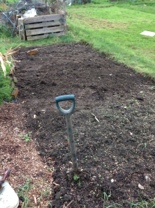The old Popcorn bed all ready for winter. That's another one sorted, only a few more to go.