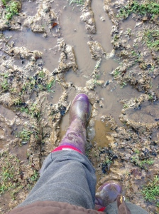 Just a bit on the muddy side!