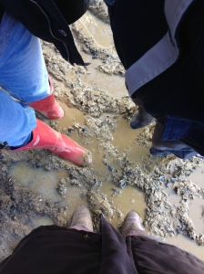 The mud made farty noises when we tried to remove out wellies from it.