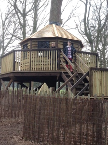 This has to be the coolest treehouse I've ever seen.