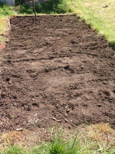 All ready fro next weeks sowing fest! Can't wait.