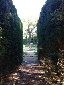 And into the Dutch Garden.