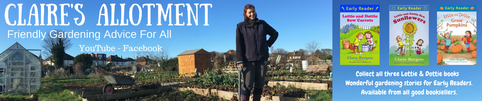 Claire's Allotment latest update
