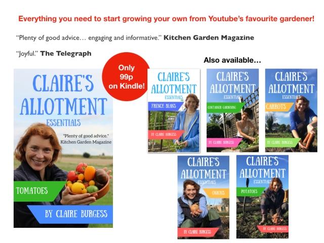 Claire Kindle ads.001